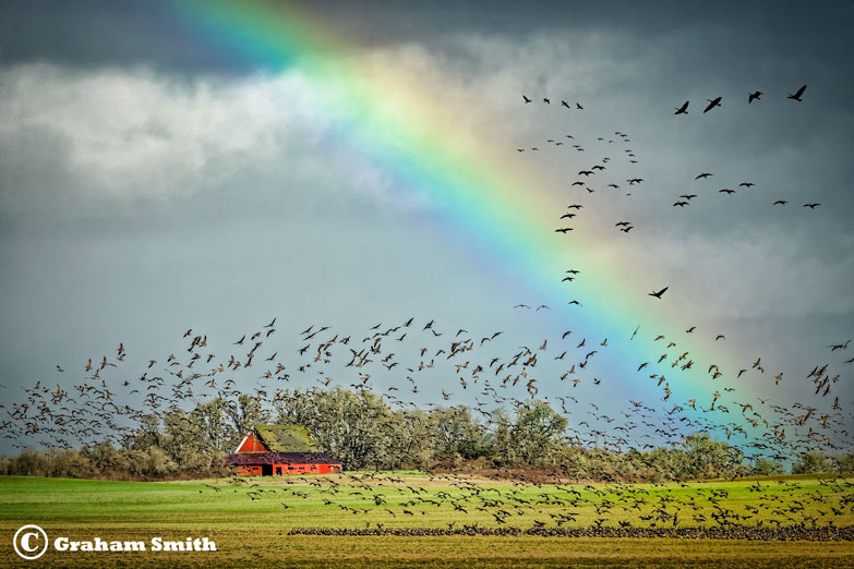 Fineley_Barn_Rainbow