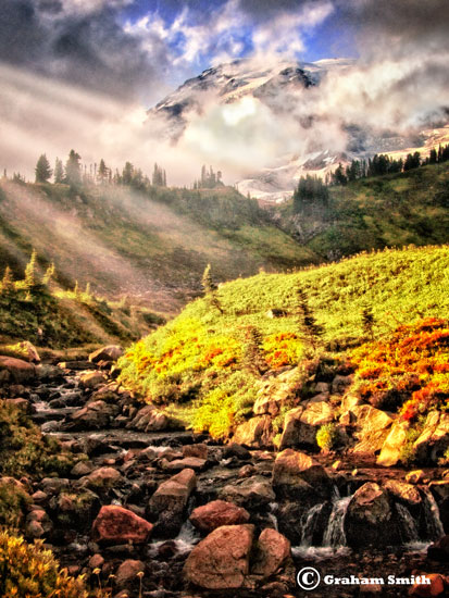 Rainier_Creek_Beams